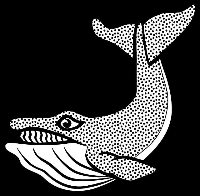 Dibujos de ballenas » BALLENAPEDIA